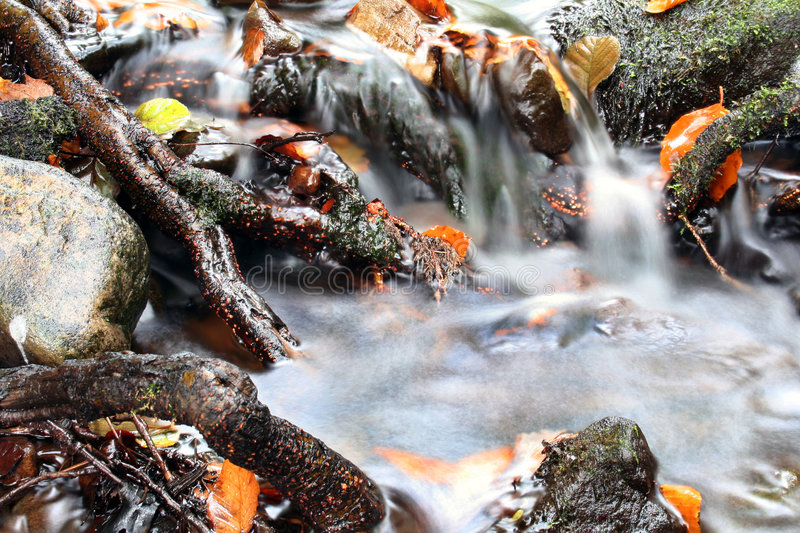 Valley stream royalty free stock image