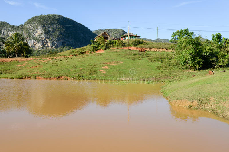 The valley of Vinales on Cuba stock photography