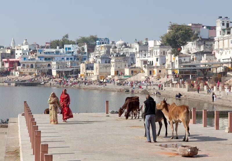Vallfärdar att gå på Ghat längs Pushkar Sarovar sjön i Rajasthan, Indien arkivfoton