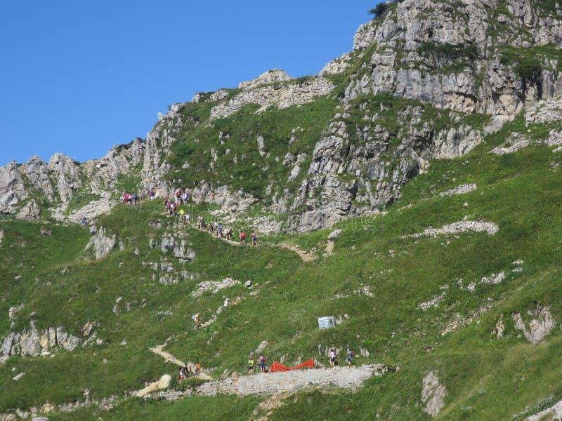 Valli del Pasubio Trentino Italy royaltyfri fotografi