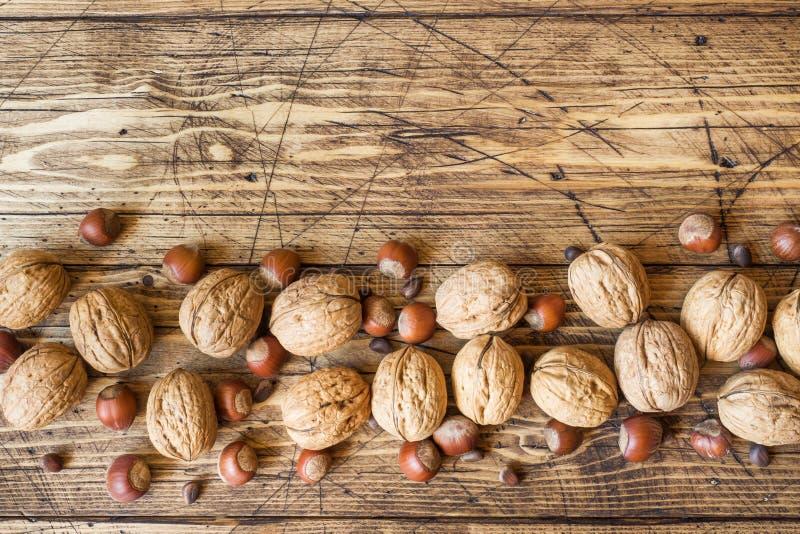 Valnötter, hasselnötter och cederträ på en mörk bakgrund av gammalt trä Sunt utrymme för valnötnäringkopia arkivbild