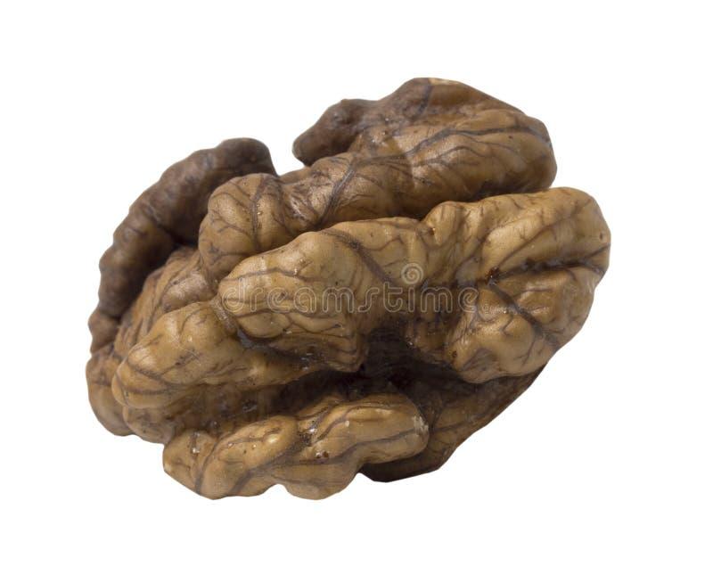 Valnötter isolerade Nut-kernel på vit bakgrund royaltyfria foton