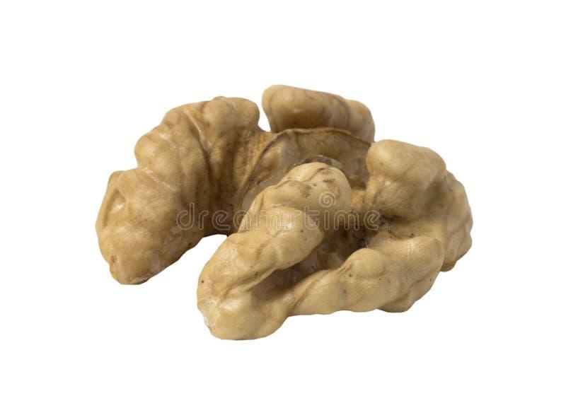 Valnötter isolerade Nut-kernel på vit bakgrund royaltyfri bild