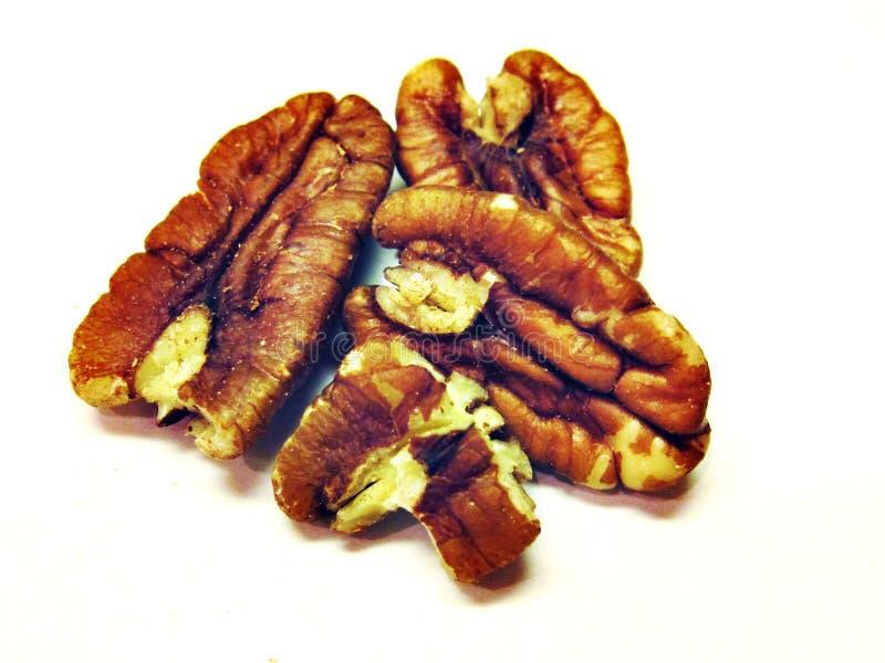 Valnötter med en vit bakgrund royaltyfria bilder