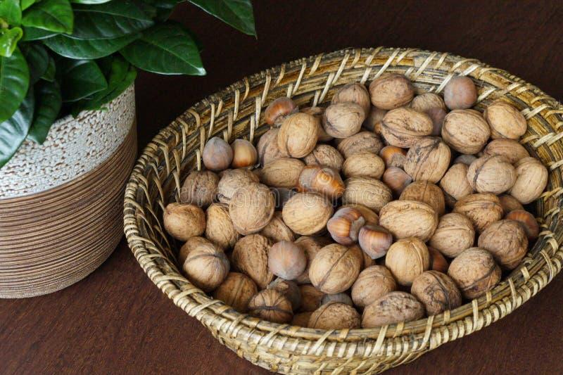 Valnötter och hasselnötter arkivfoton