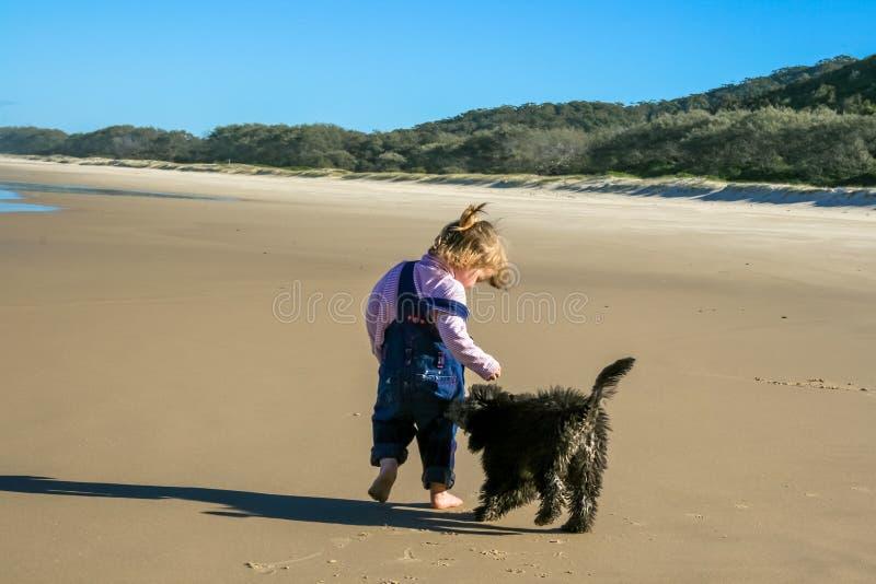Valp och barn på stranden royaltyfria bilder