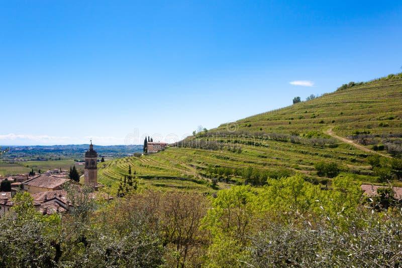 Valpolicella wzgórzy krajobraz, Włoski viticulture teren, Włochy fotografia stock