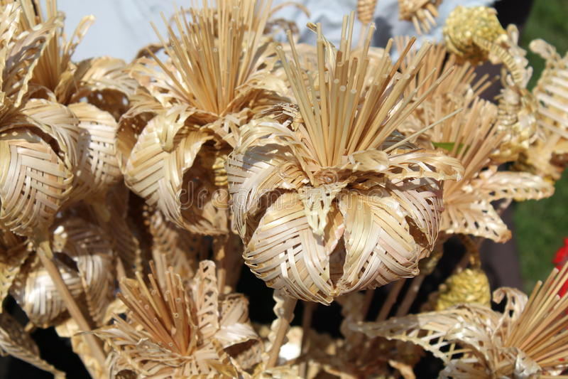 Valse bloemen Mooi en zeldzaam royalty-vrije stock foto's