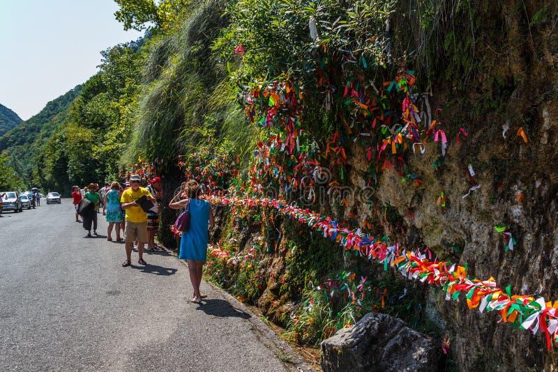 Valt de Meisjescheuren op weg aan meer Ritsa in Abchazië stock foto's
