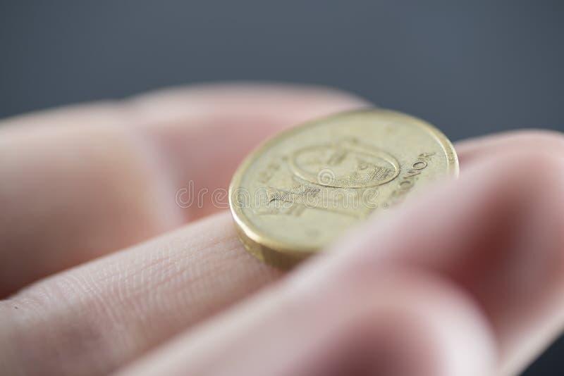 Valuta av Sverige arkivbild