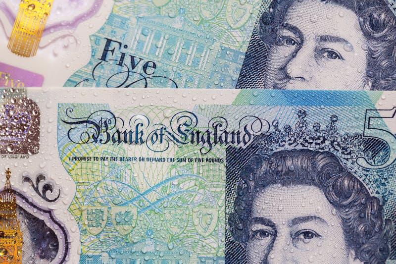 Valuta britannica - una nota da cinque libbre immagine stock
