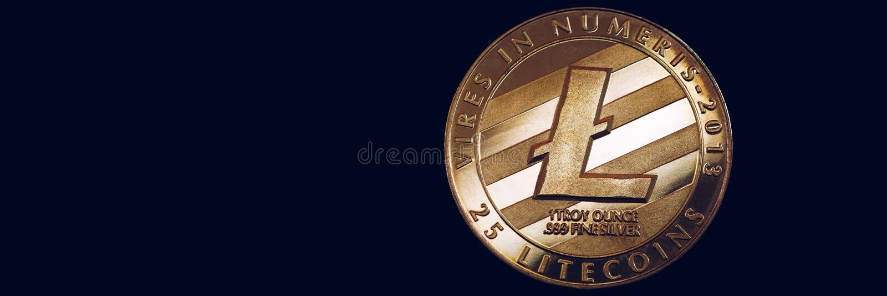 Valuta cripto di cryptocurrency di Litecoin Moneta d'argento di Litecoin con il simbolo di Litecoin dell'oro Cryptocurrency di lt immagine stock libera da diritti