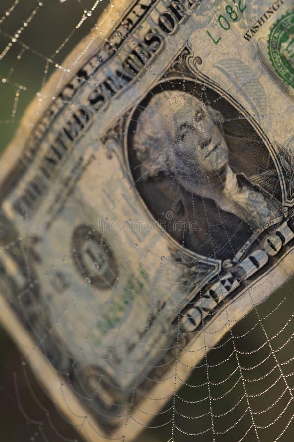 Valutadollar i fara av spindeln arkivfoto