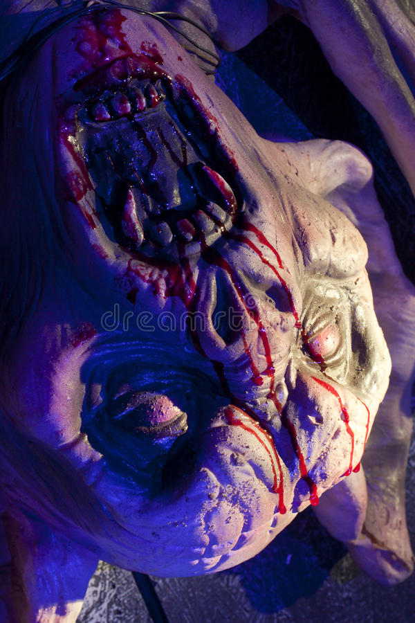 Download Vampire Bat Close Up stock image. Image of terror, dead - 21308223
