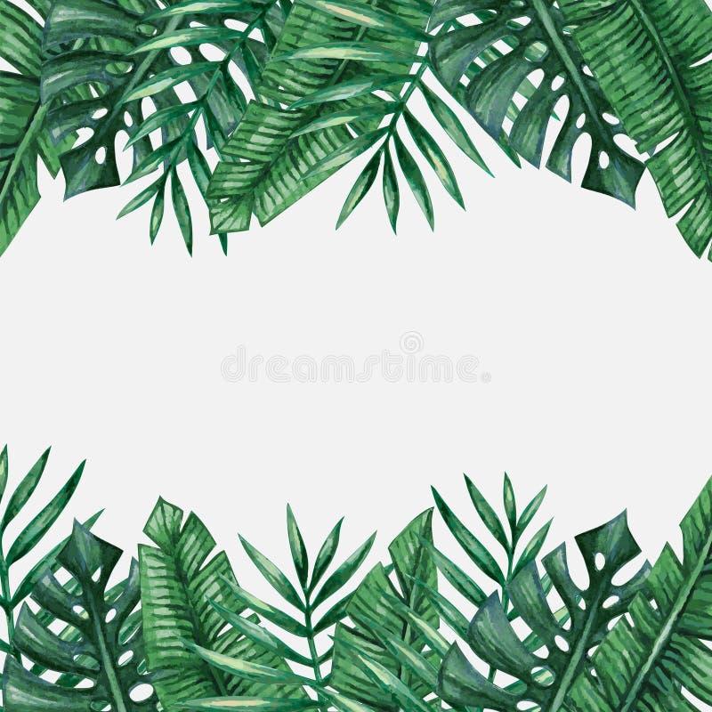 van achtergrond palmbladeren malplaatje vector illustratie