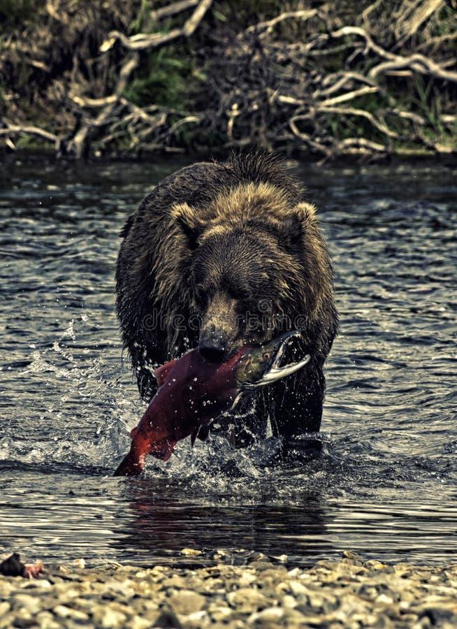 Van Alaska draag vissend royalty-vrije stock afbeeldingen