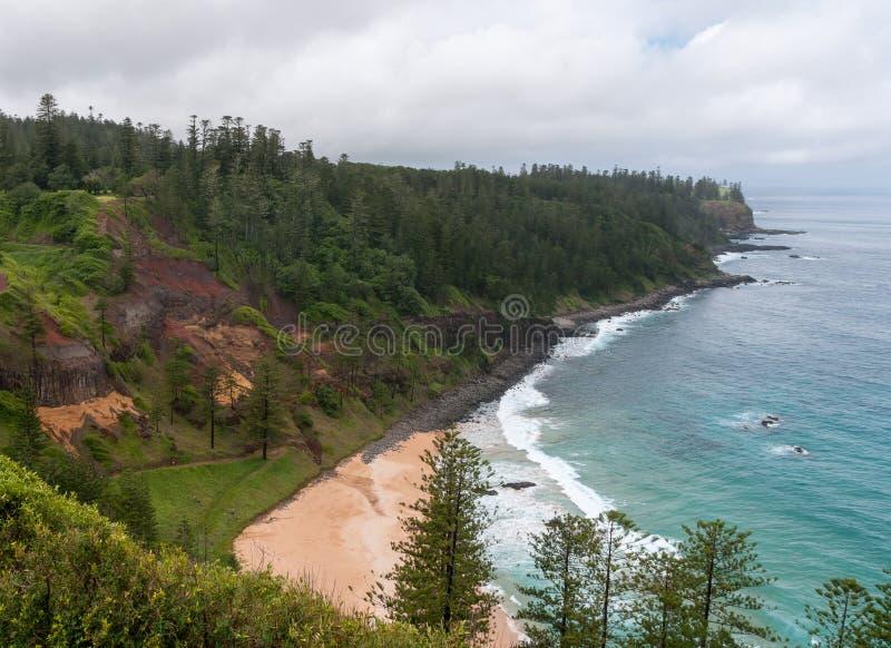 Van Anson Bay het strand en van Norfolk Pijnbomen, het Eiland van Norfolk stock afbeeldingen
