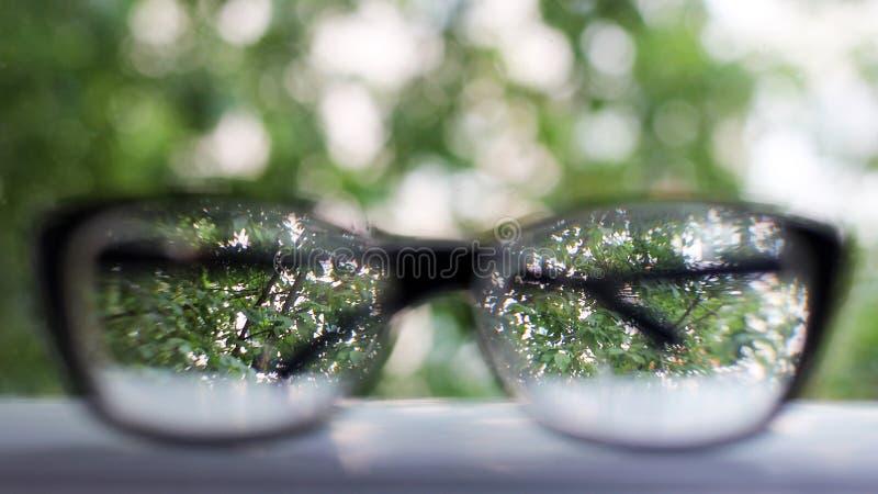 Van de achtergrond glazennadruk houten oogvisie stock foto