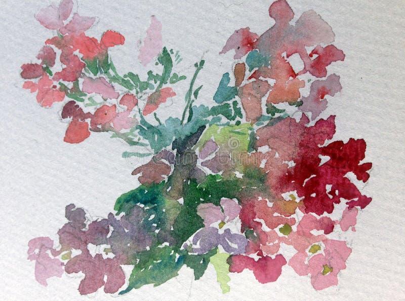 Van de achtergrond waterverfkunst kleurrijke bloem wilde tuin royalty-vrije illustratie