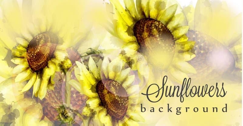 Van de achtergrond zonnebloemenwaterverf Vector Bloemen de lentedecors vector illustratie