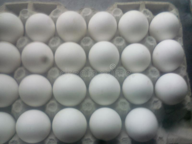 Van de bedrijfs eierenopslag voedsel stock fotografie