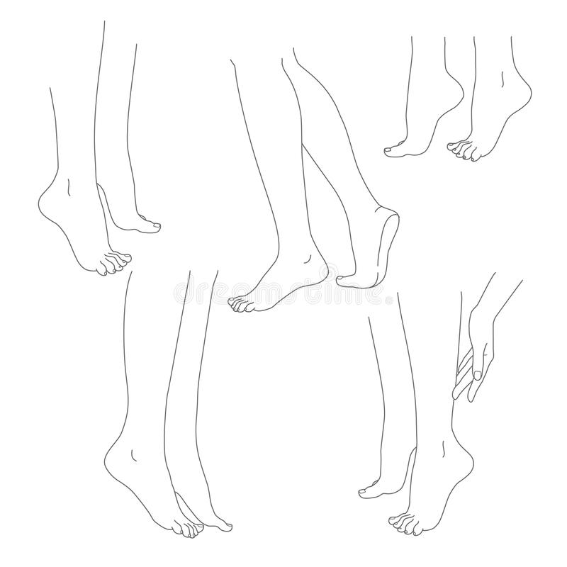 Van de benen de vrouwelijke naakte voeten van de vrouw vectorreeks vector illustratie