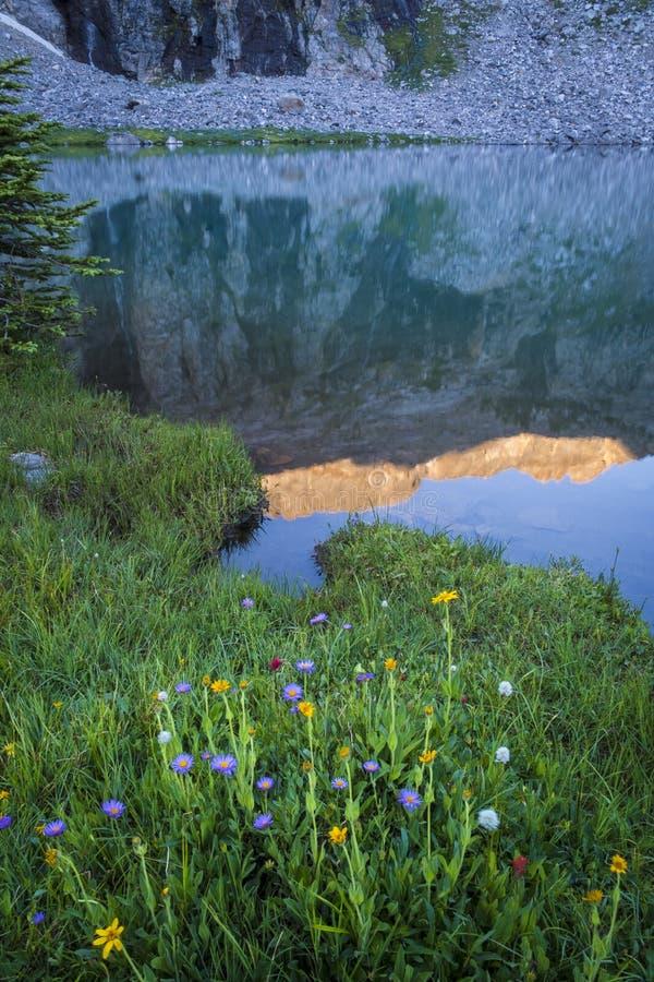 Van de bergmeer en ochtend bezinningen stock fotografie
