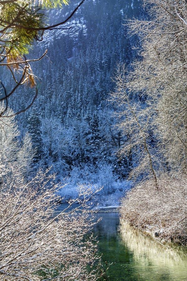Van de Bergwenatchee van de de wintersneeuw de Blauwe Rivier Washington stock afbeeldingen