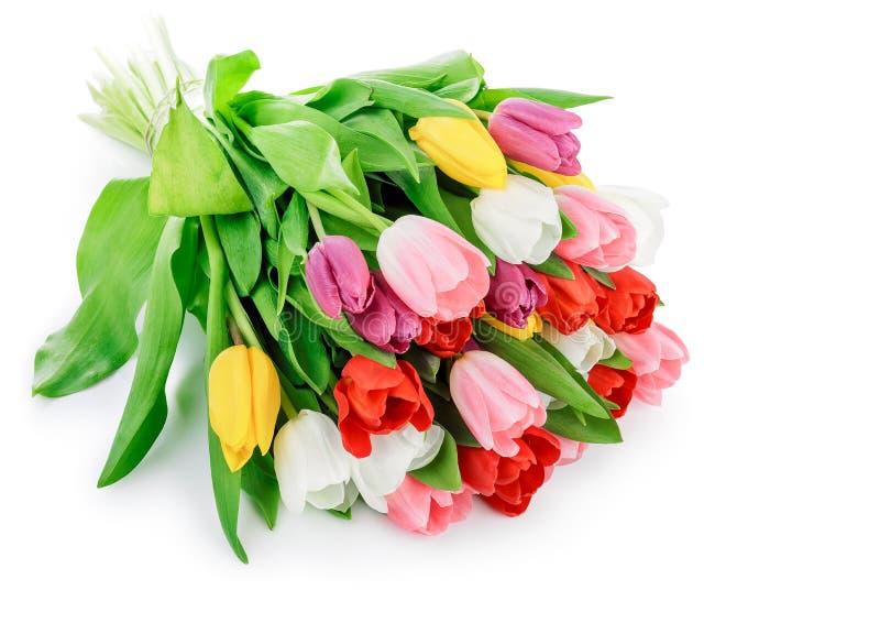 Van de de bloemenbos van de lentetulpen de groeten romantische gift stock afbeelding