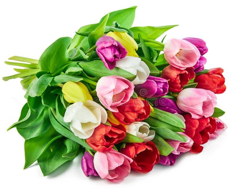 Van de de bloemenbos van de lentetulpen de groeten romantische gift stock fotografie