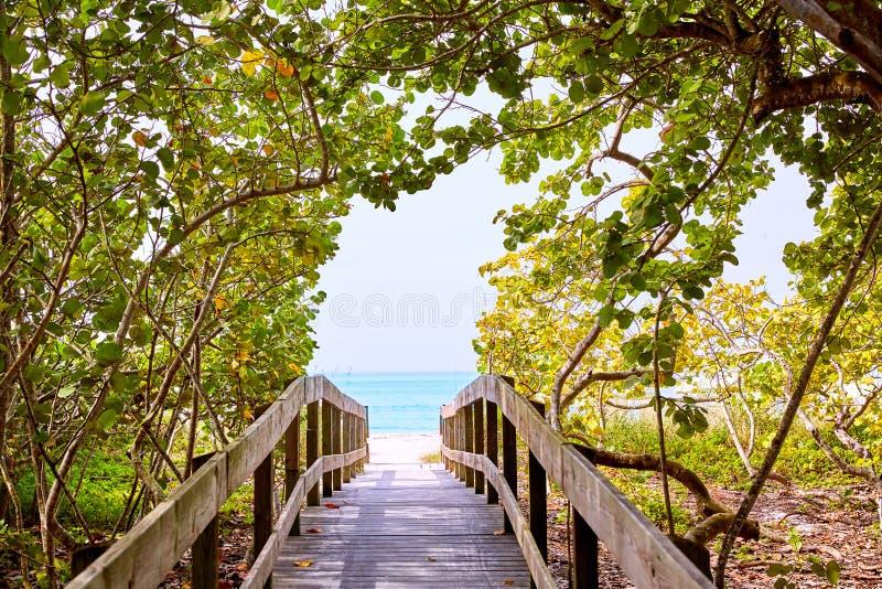 Van de bonitabaai van Florida het Blootvoetse strand de V.S. royalty-vrije stock fotografie