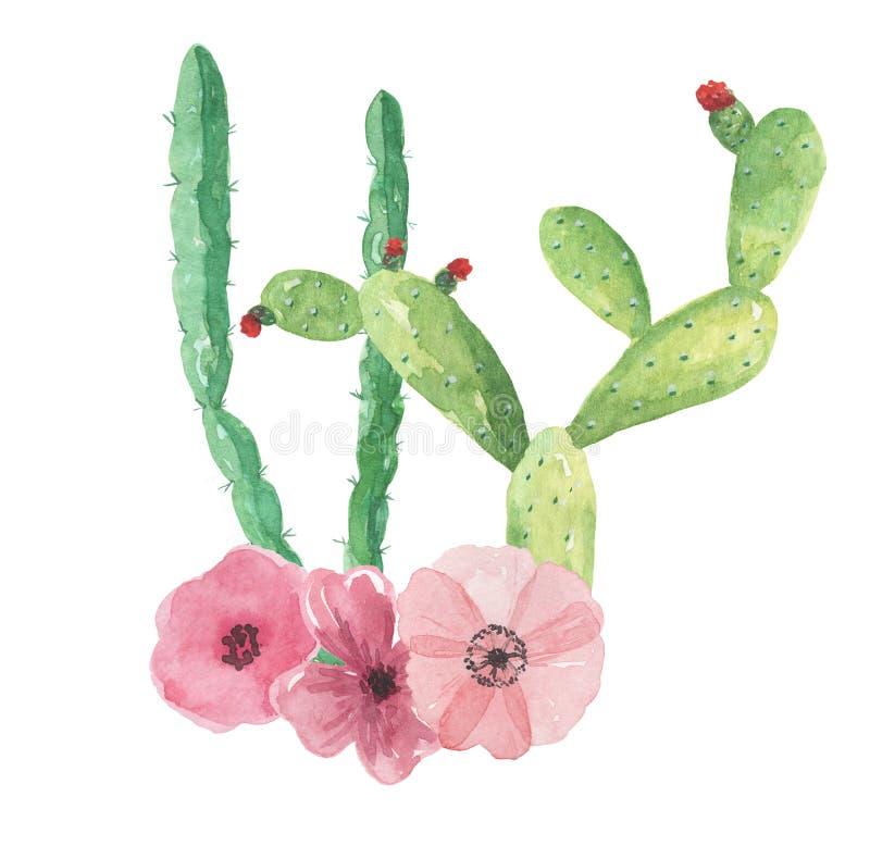 Van de de Cactussenregeling van de cactuswaterverf Groen Roze de Bloemenboeket van Mexico vector illustratie