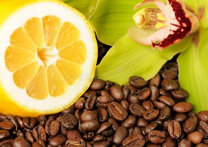Van de citroenorchidee en koffie bonen royalty-vrije stock afbeeldingen