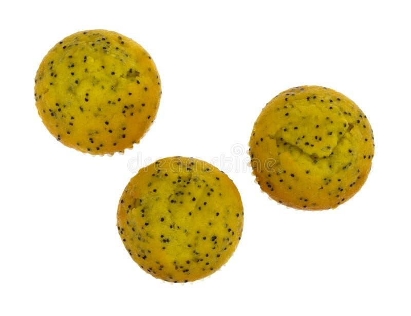 Van de de citroenpapaver van de beetgrootte het zaadmuffins royalty-vrije stock afbeelding