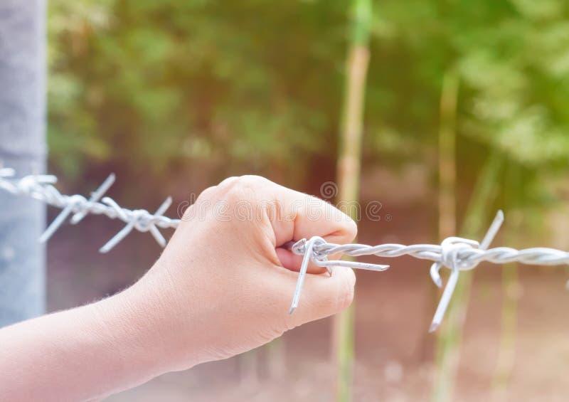 Van de de handholding van de vrouw het prikkeldraadomheining voor emotionele gevangenschap a royalty-vrije stock foto's