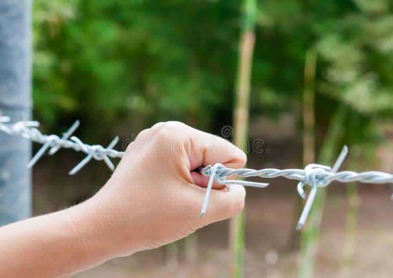 Van de de handholding van de vrouw het prikkeldraadomheining voor emotionele gevangenschap a stock fotografie