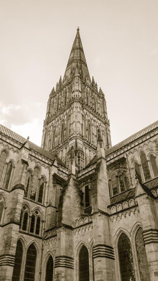 Van de de Kathedraaltoren van Salisbury de Hoeksepia Lage Toon royalty-vrije stock foto's