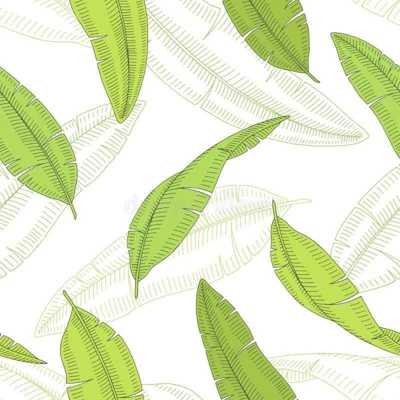 Van de de kleurenschets van het banaanpalmblad grafische naadloze het patroonillustratie royalty-vrije illustratie
