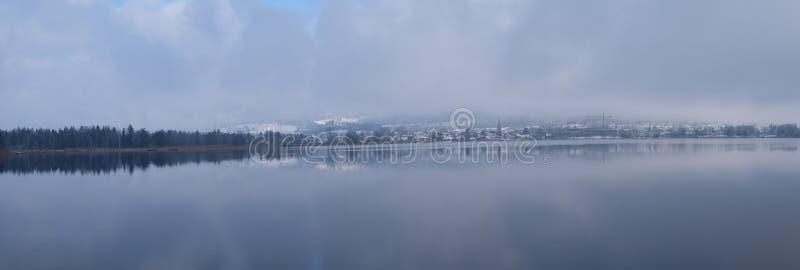Van de de Sneeuwwinter van het panoramameer de Boombos stock foto's