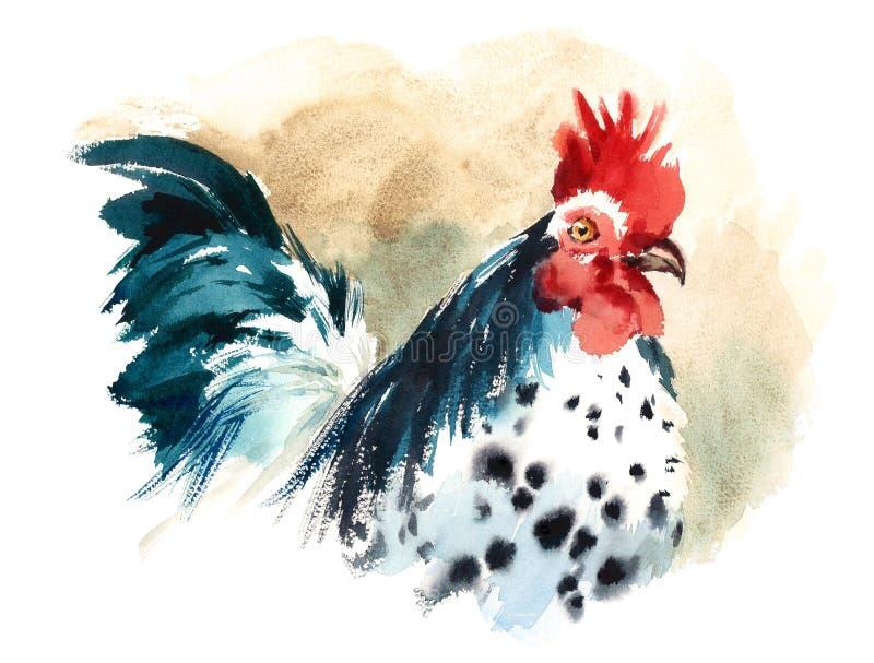 Van de de Vogelwaterverf van het haanlandbouwbedrijf Geschilderde de Illustratiehand vector illustratie