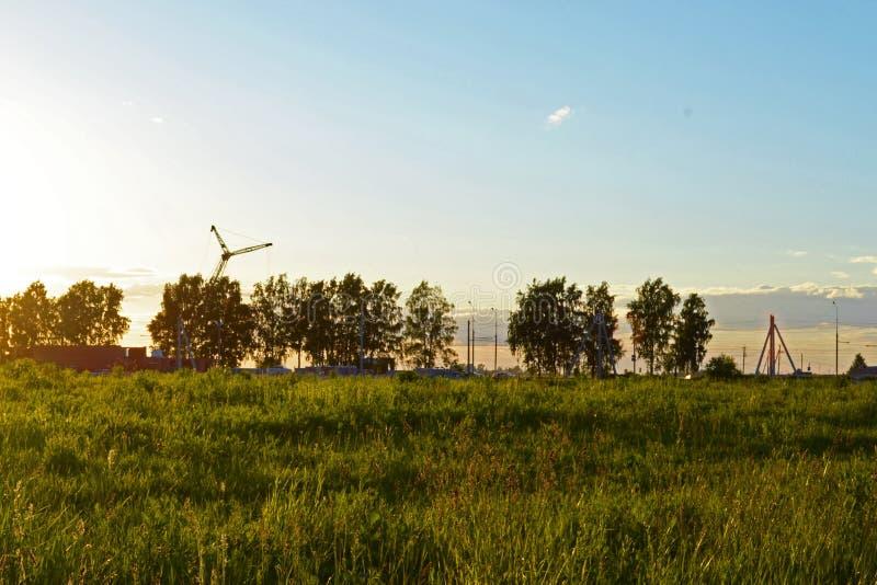 Van de de zonsondergangstad van de grashemel van de het gebiedstapkraan van de landschappen de boswolken van de het groenserenite royalty-vrije stock afbeeldingen