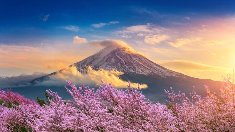 Van de Fujiberg en kers bloesems in de lente, Japan royalty-vrije stock fotografie