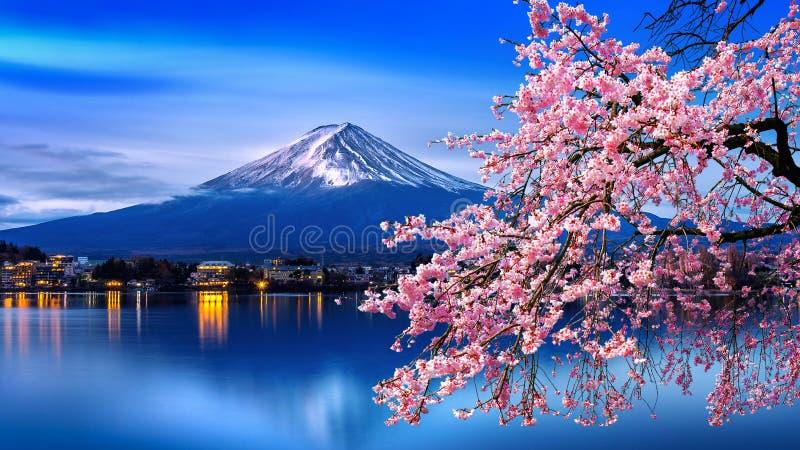 Van de Fujiberg en kers bloesems in de lente, Japan stock foto's