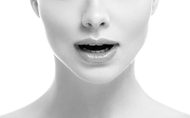 Van de de glimlachvrouw van de lippenmond isoleerde het mooie roze natuurlijke de lippenwijfje op witte zwart-wit stock foto