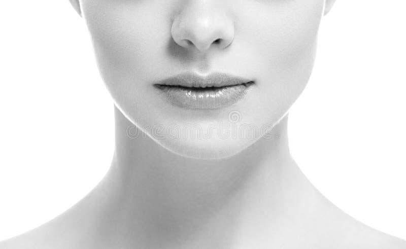 Van de de glimlachvrouw van de lippenmond isoleerde het mooie roze natuurlijke de lippenwijfje op witte zwart-wit royalty-vrije stock afbeeldingen