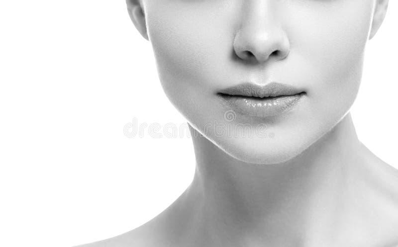 Van de de glimlachvrouw van de lippenmond isoleerde het mooie roze natuurlijke de lippenwijfje op witte zwart-wit stock afbeeldingen