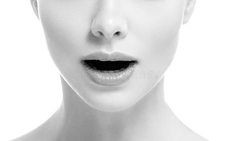 Van de de glimlachvrouw van de lippenmond isoleerde het mooie roze natuurlijke de lippenwijfje op witte zwart-wit stock afbeelding