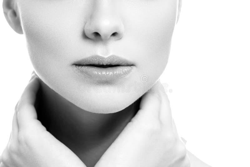 Van de de glimlachvrouw van de lippenmond isoleerde het mooie roze natuurlijke de lippenwijfje op witte zwart-wit stock fotografie