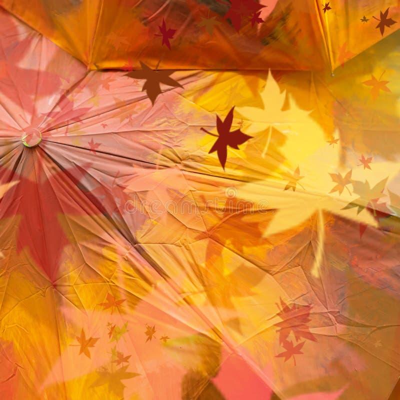 Van de herfst abstracte grunge textuur als achtergrond van rode gekleurde paraplu's met esdoornbladeren Dalingslicht en kleur van royalty-vrije stock afbeeldingen