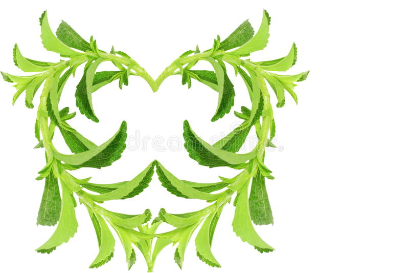 Van de het hartvorm van het suikersubstituut de installatie van Stevia op witte achtergrond royalty-vrije stock foto